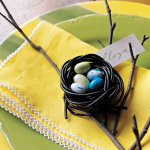 candy-nest-lg