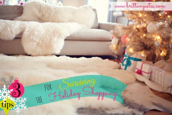 surviving holiday shopping